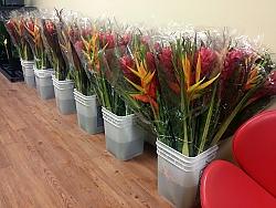 shopp-bouquet.jpg