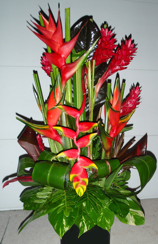 how to arrange tropical flowers  flower, Natural flower