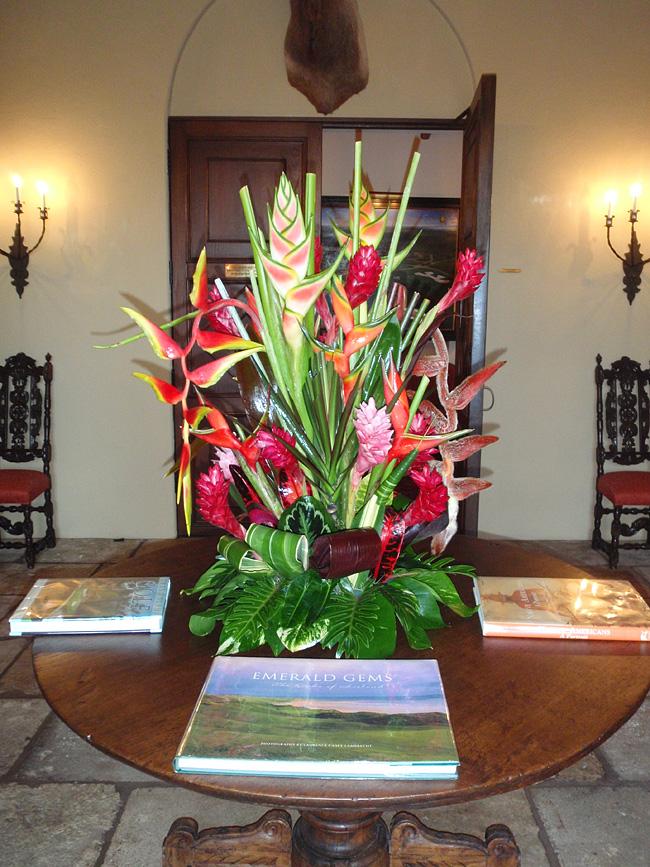 Fresh Cut Tropical Flowers Exotica Tropicals Tropical