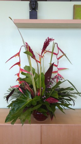 Tropical Flower Arrangement Florida Brevard Melbourne heliconia ginger bird of paradise