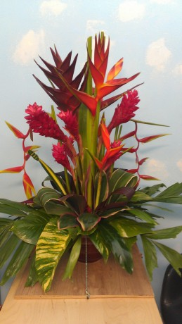 tropical flowers bouquet events weddings parties