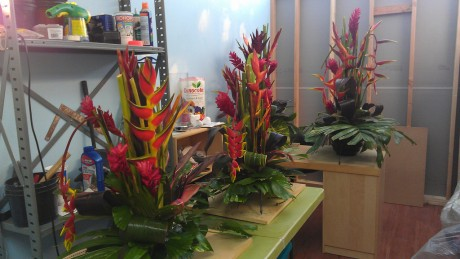 tropical flower arrangements florida brevard weddings events