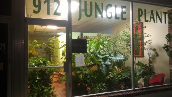 plant nursery melbourne florida brevard county