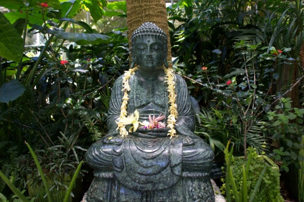 marie-selby-buddha