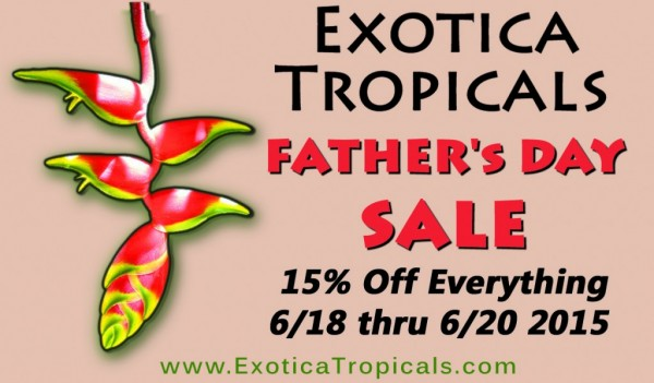 fathers-day-coupon