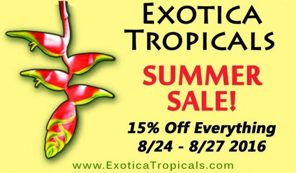 2016-summer-sale